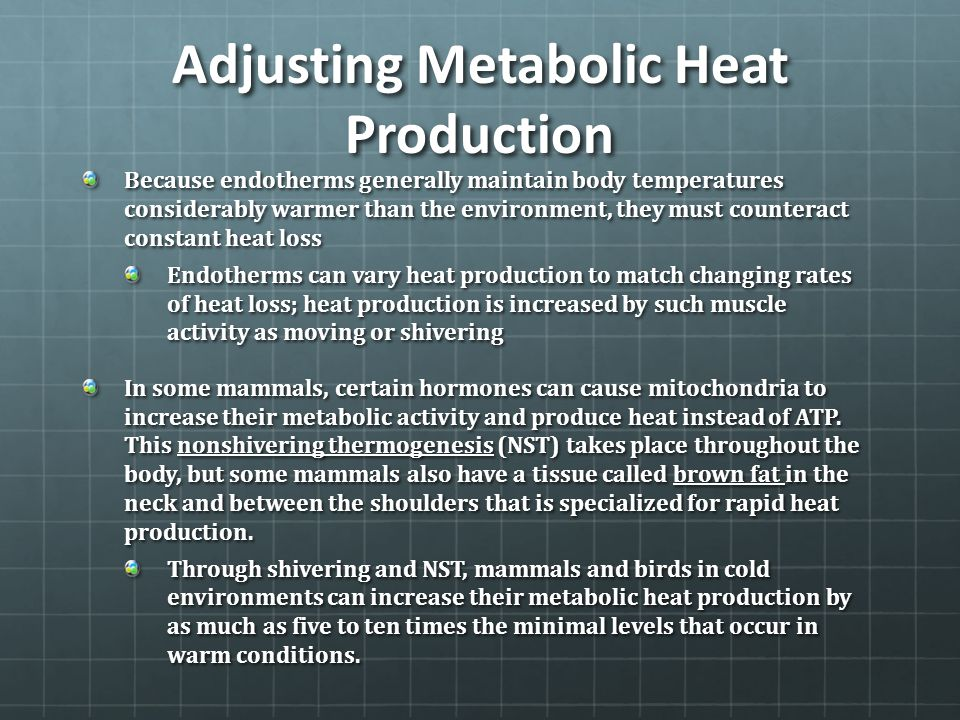 Adjusting Metabolic Heat Production