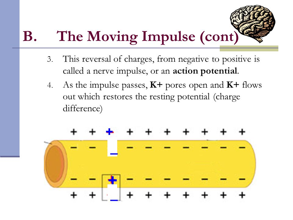 The Moving Impulse (cont)