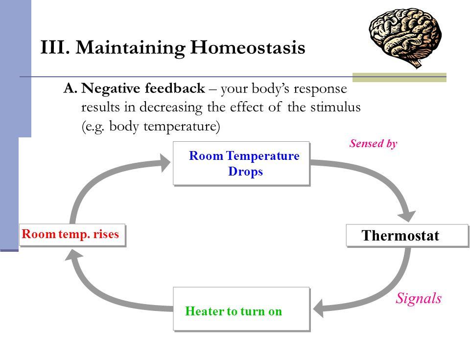 III. Maintaining Homeostasis