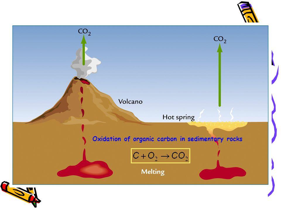 Oxidation of organic carbon in sedimentary rocks