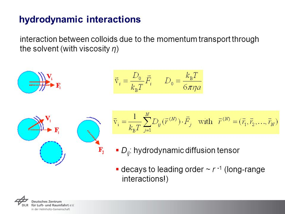 hydrodynamic interactions
