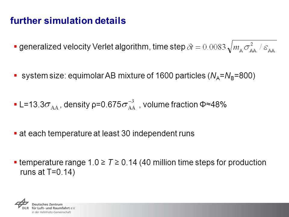further simulation details
