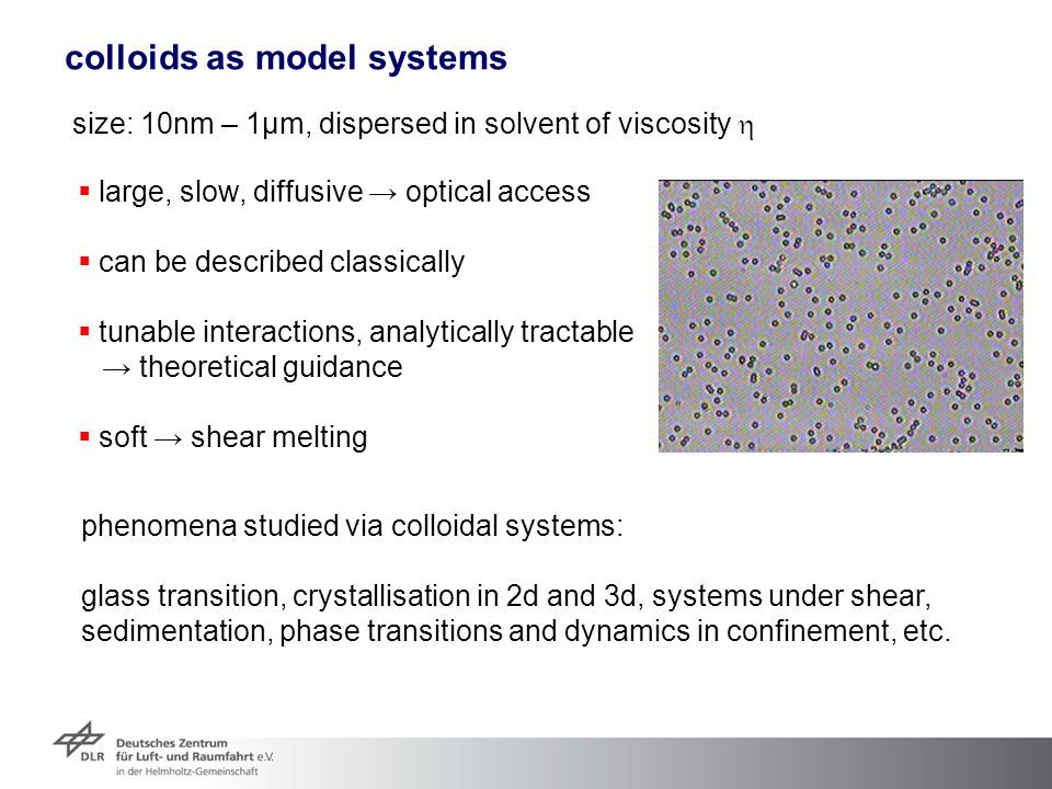 colloids as model systems