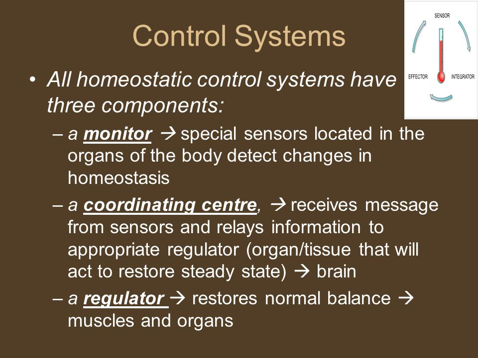 Control Systems All homeostatic control systems have three components: