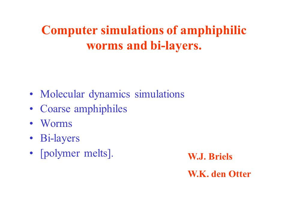 Computer simulations of amphiphilic worms and bi-layers.