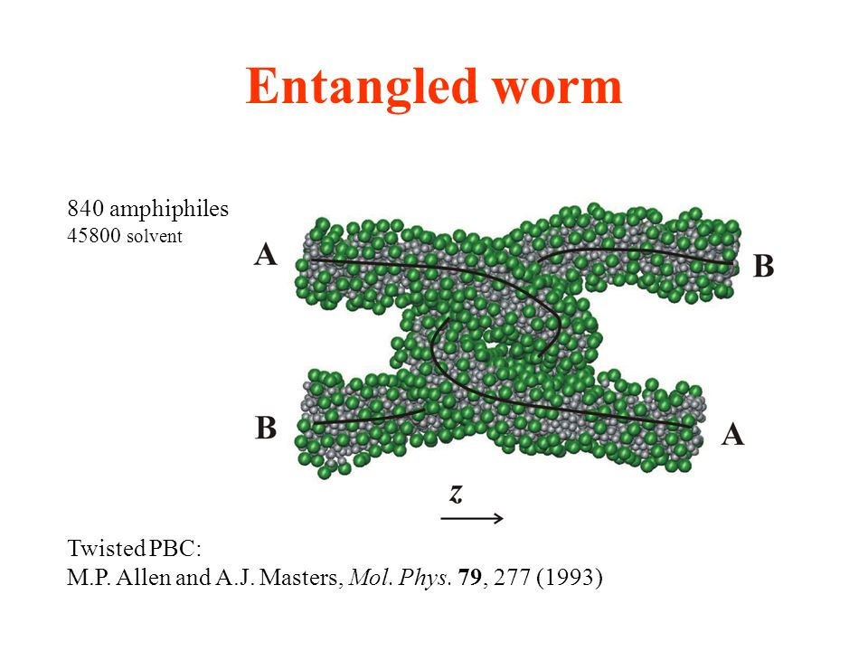 Entangled worm 840 amphiphiles 45800 solvent