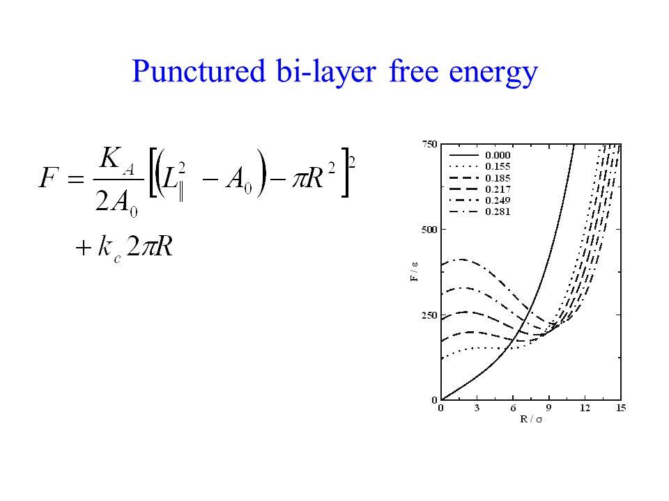 Punctured bi-layer free energy