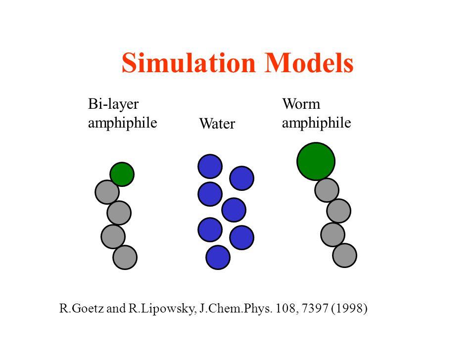 Simulation Models Bi-layer amphiphile Worm amphiphile Water