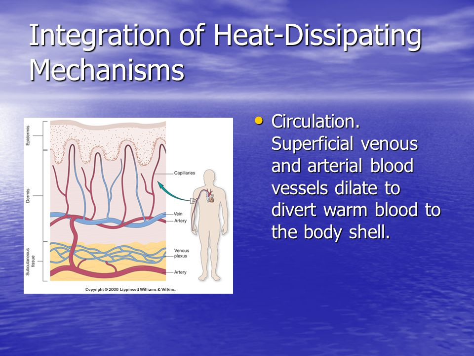 Integration of Heat-Dissipating Mechanisms