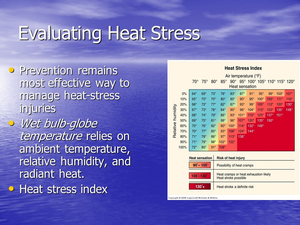 Evaluating Heat Stress