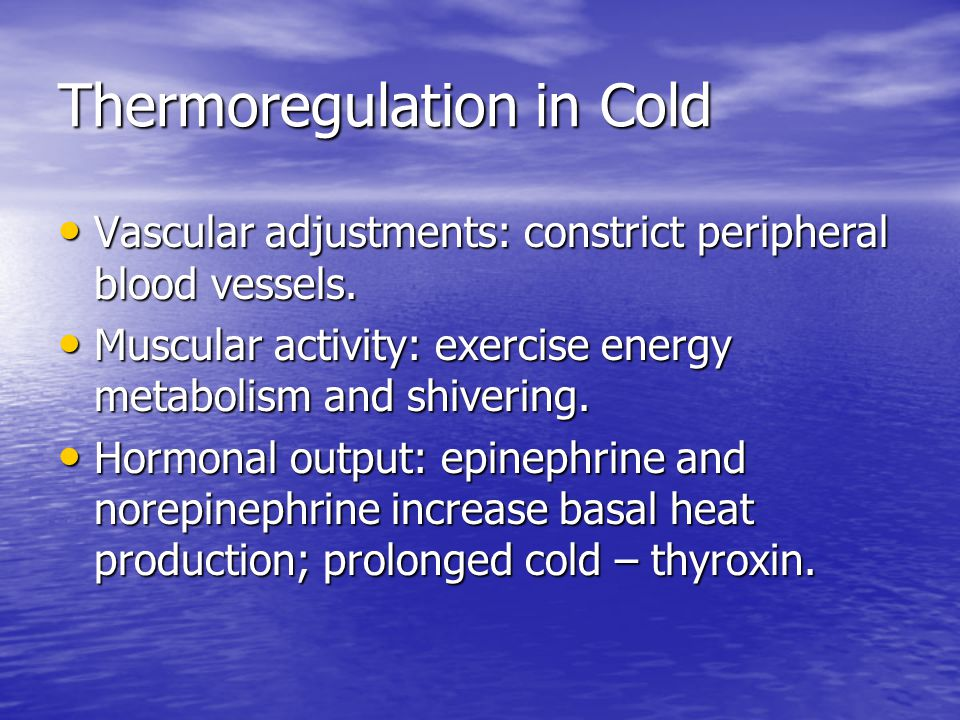 Thermoregulation in Cold