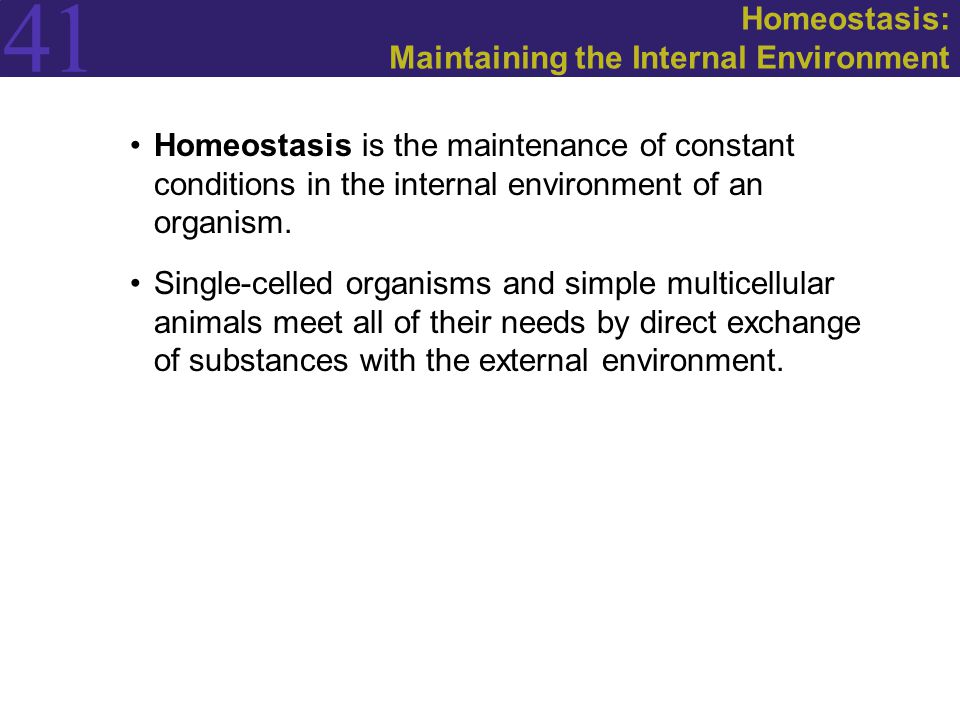 Homeostasis: Maintaining the Internal Environment