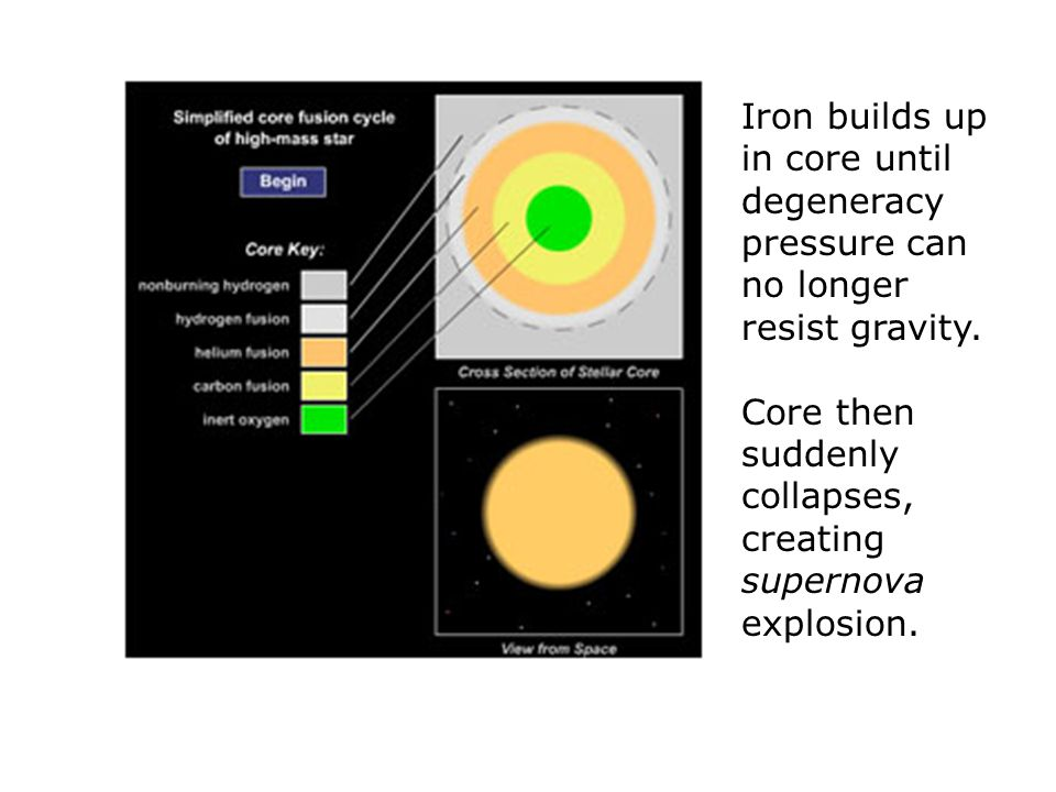 Core then suddenly collapses, creating supernova explosion.