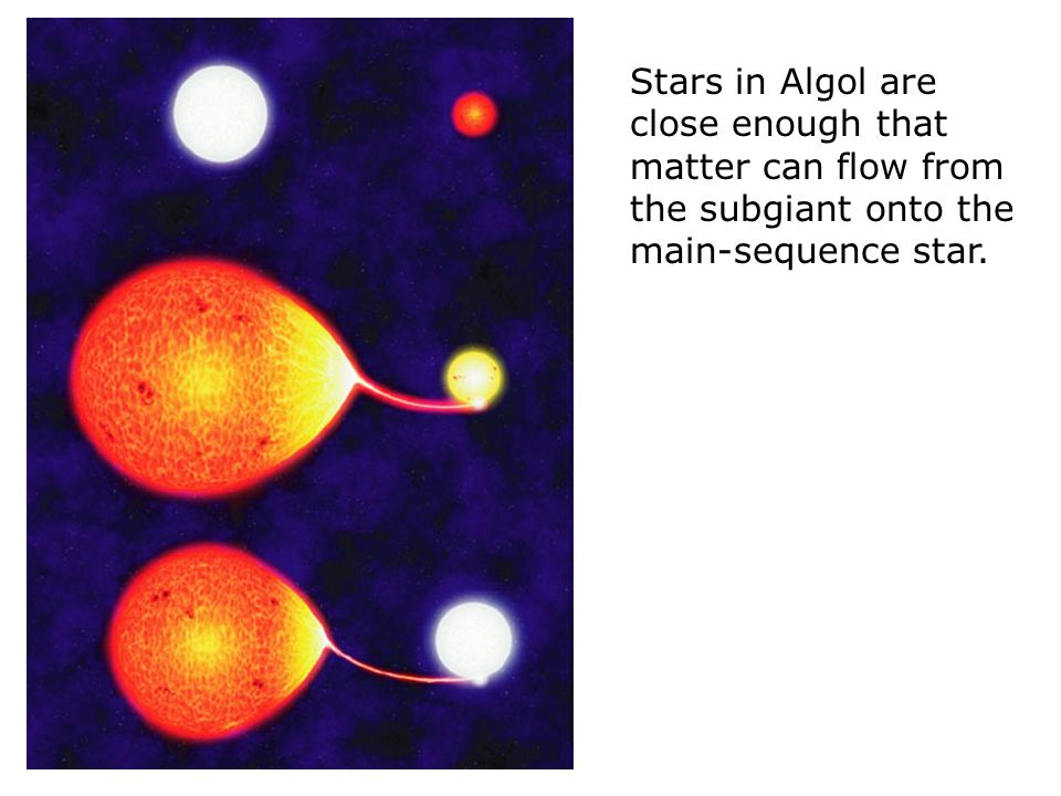 Stars in Algol are close enough that matter can flow from the subgiant onto the main-sequence star.