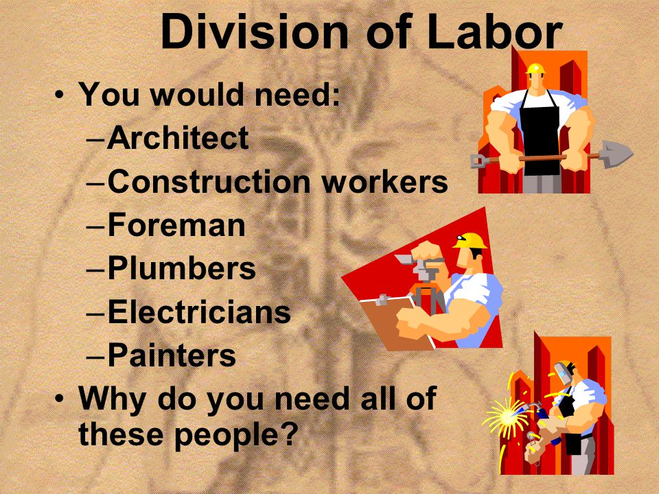 Division of Labor You would need: Architect Construction workers