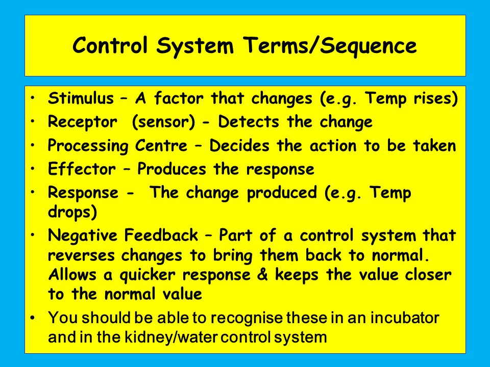 Control System Terms/Sequence