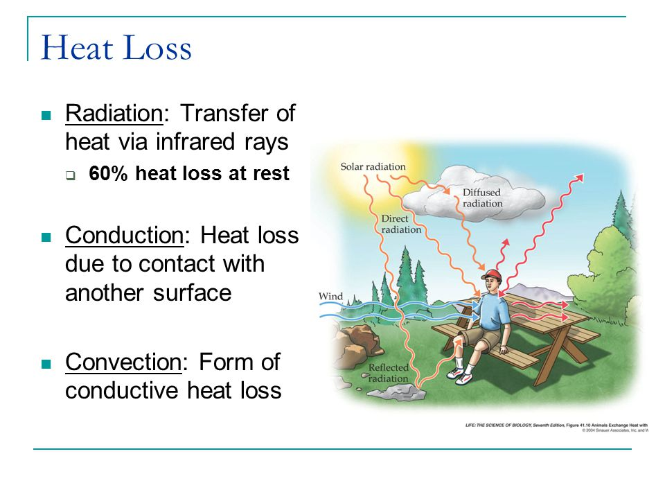 Heat Loss Radiation: Transfer of heat via infrared rays