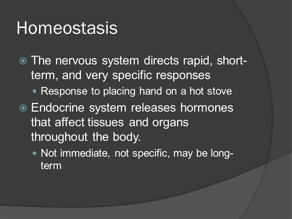 Homeostasis The nervous system directs rapid, short-term, and very specific responses. Response to placing hand on a hot stove.