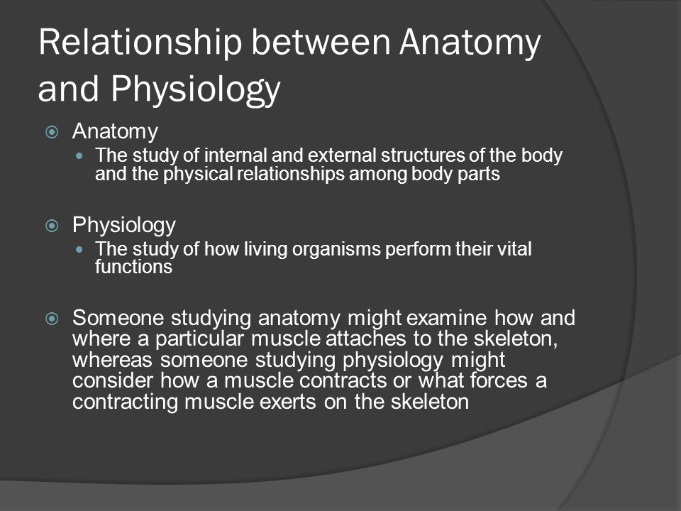 Difference between anatomy and physiology essay | Essay Help ...