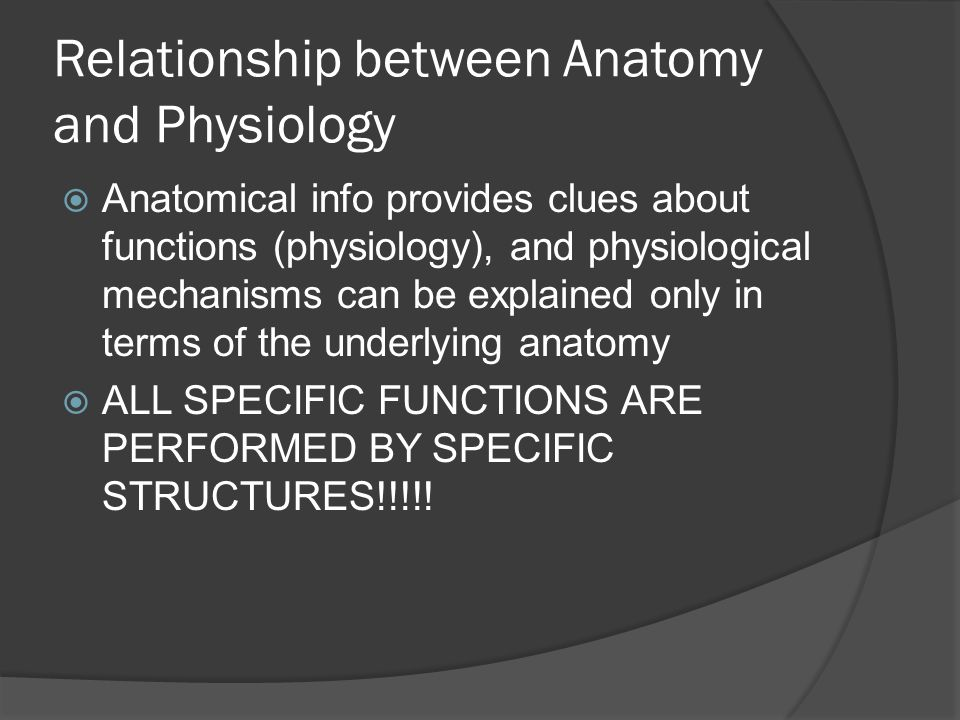 Relationship between Anatomy and Physiology