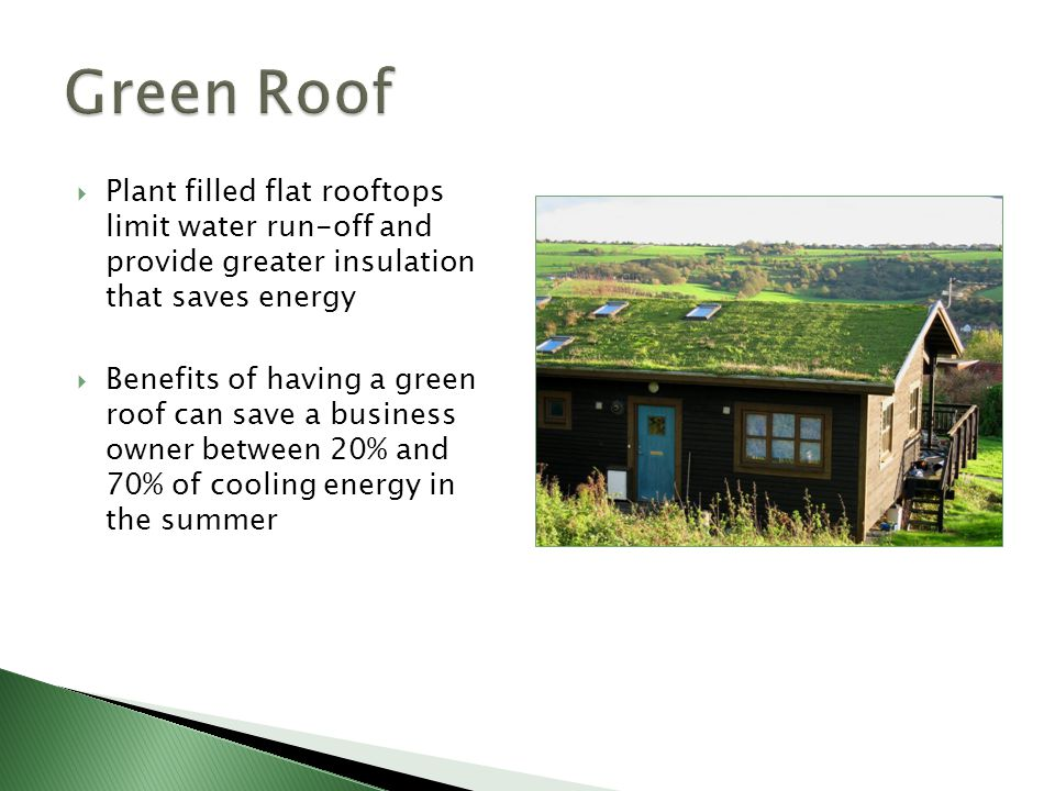 Green Roof Plant filled flat rooftops limit water run-off and provide greater insulation that saves energy.