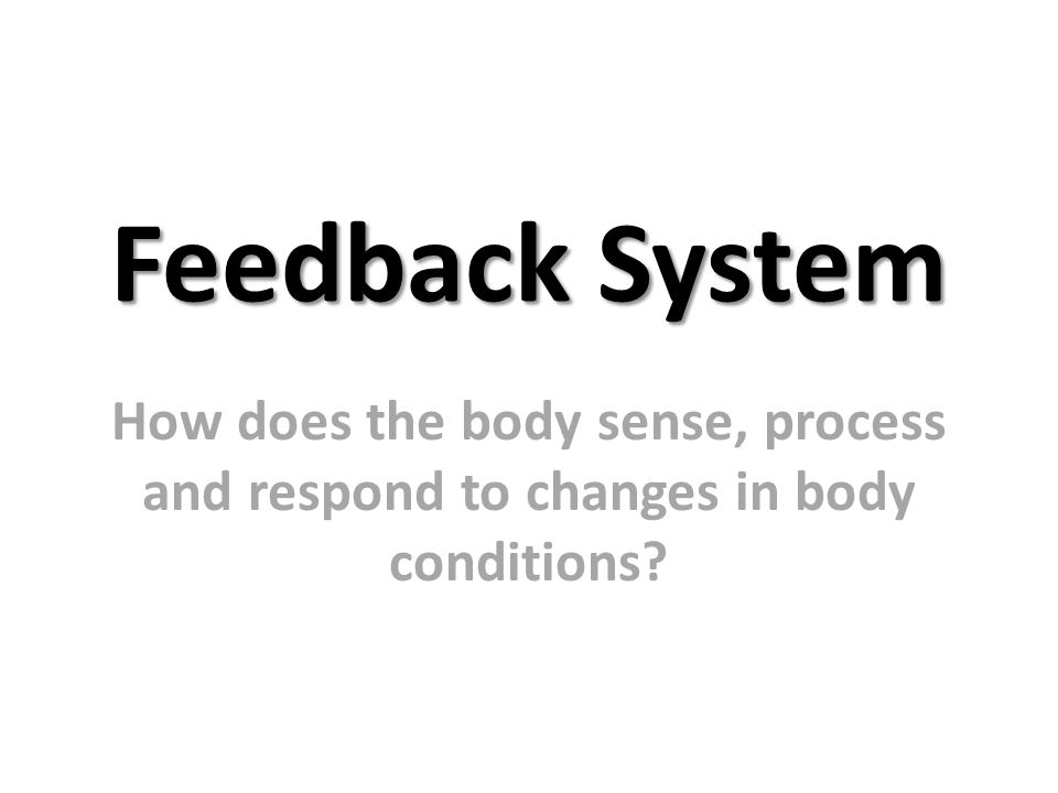 Feedback System How does the body sense, process and respond to changes in body conditions