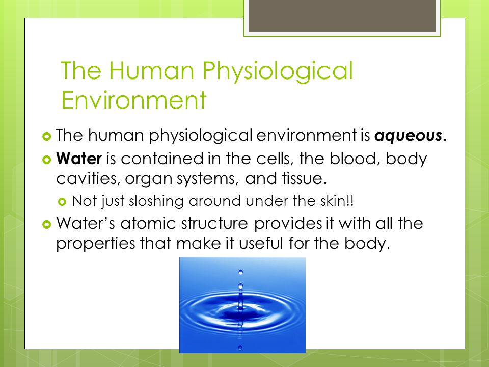 The Human Physiological Environment