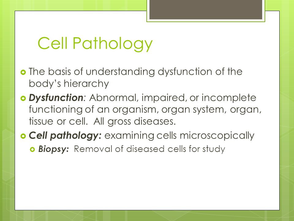 Cell Pathology The basis of understanding dysfunction of the body's hierarchy.