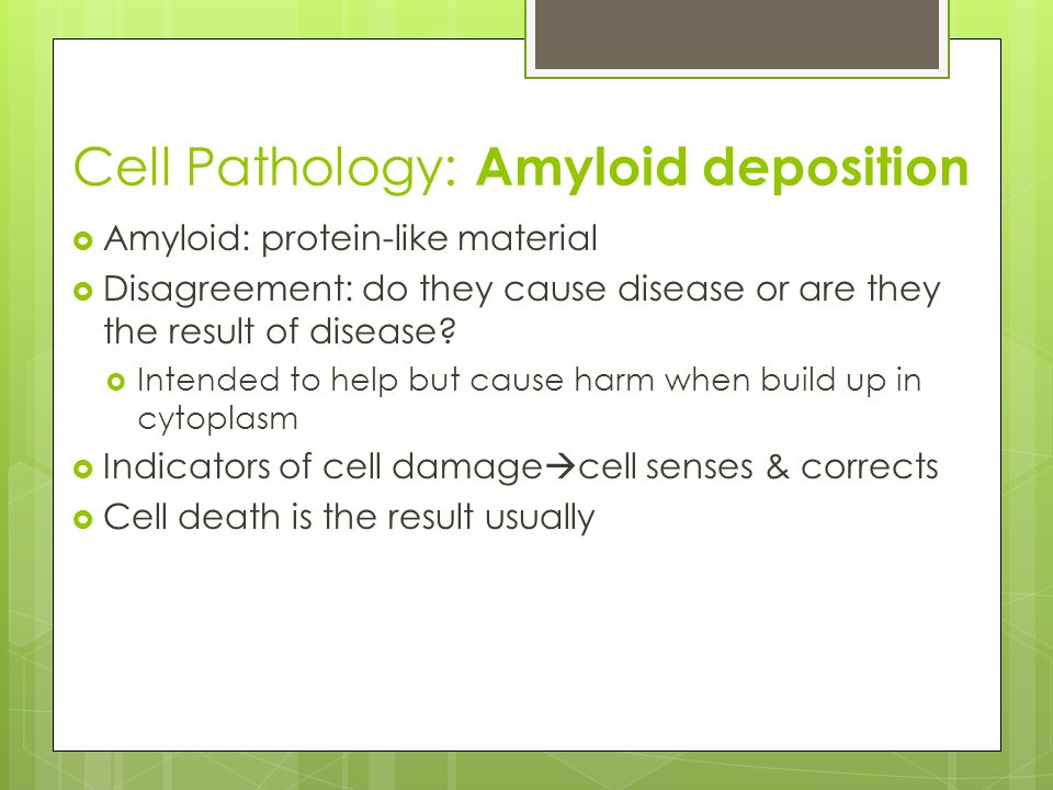 Cell Pathology: Amyloid deposition
