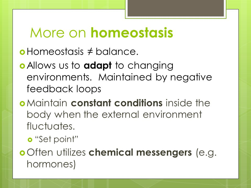 More on homeostasis Homeostasis ≠ balance.