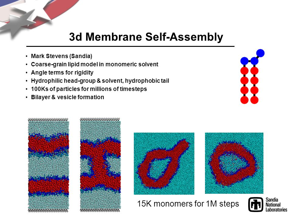 3d Membrane Self-Assembly