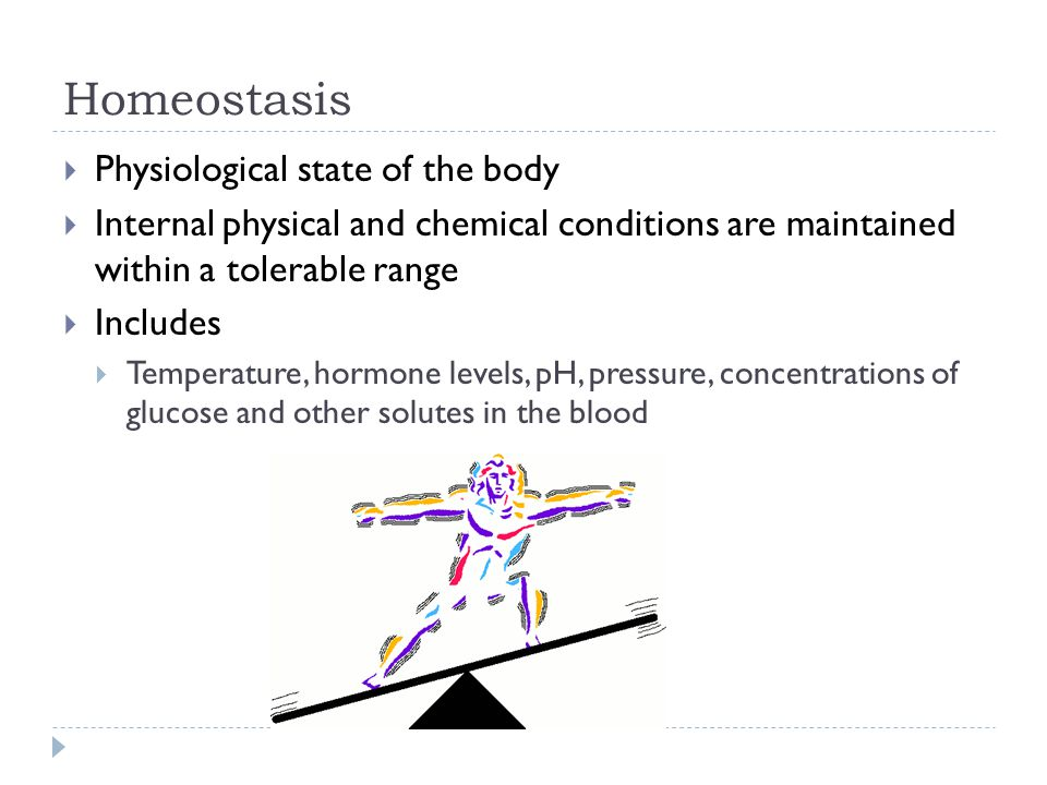 Homeostasis Physiological state of the body