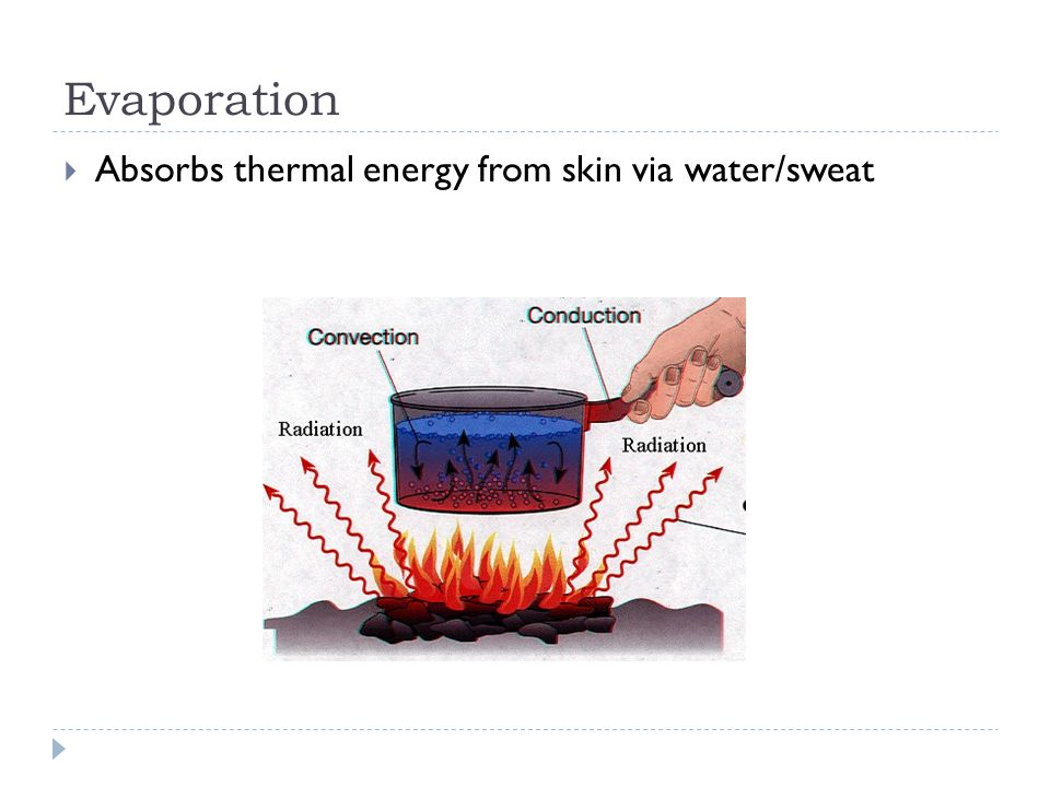 Evaporation Absorbs thermal energy from skin via water/sweat