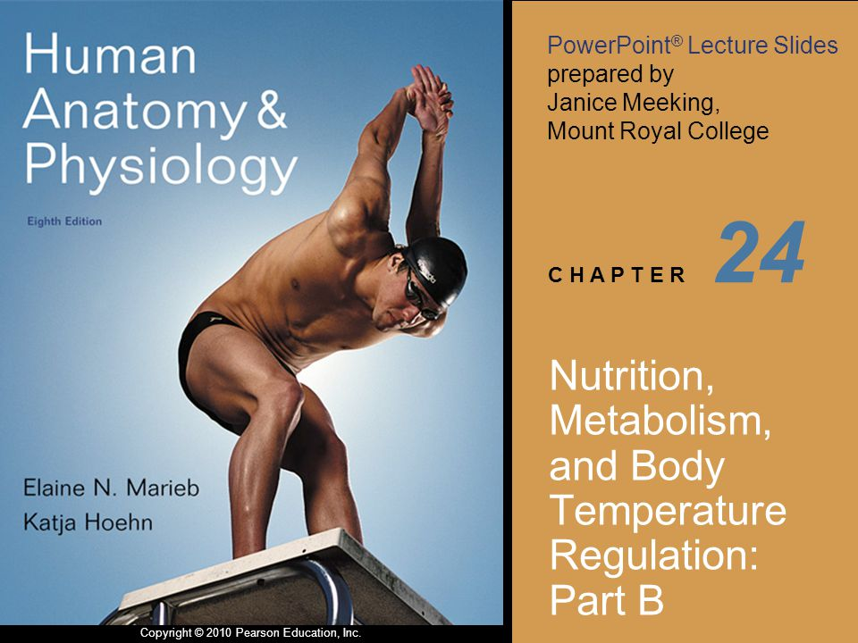 Nutrition, Metabolism, and Body Temperature Regulation: Part B