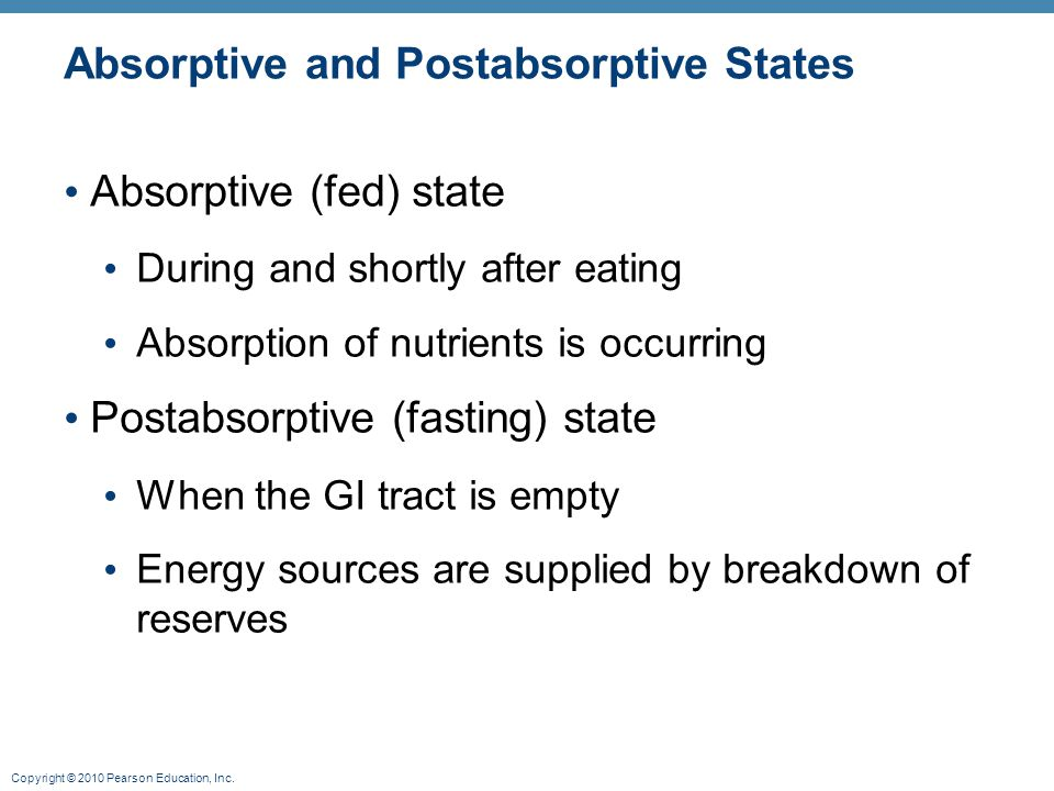 Absorptive and Postabsorptive States