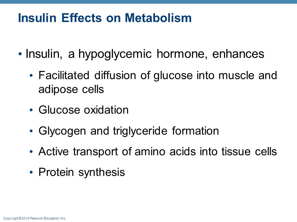 Insulin Effects on Metabolism