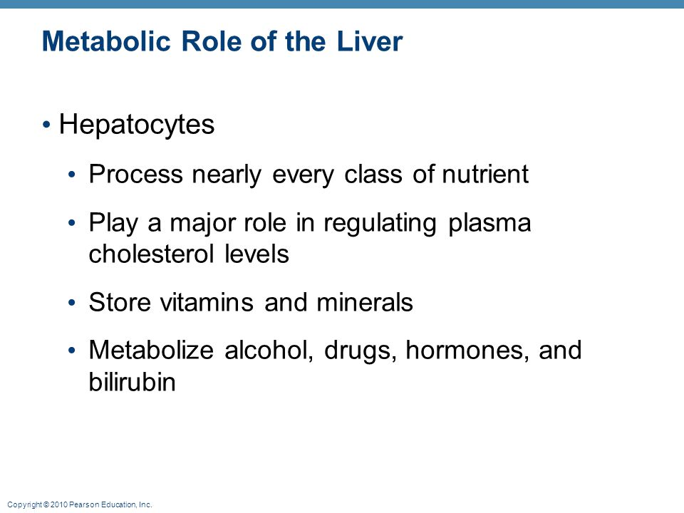 Metabolic Role of the Liver