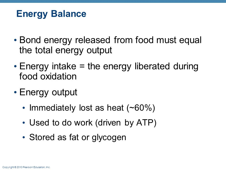 Bond energy released from food must equal the total energy output