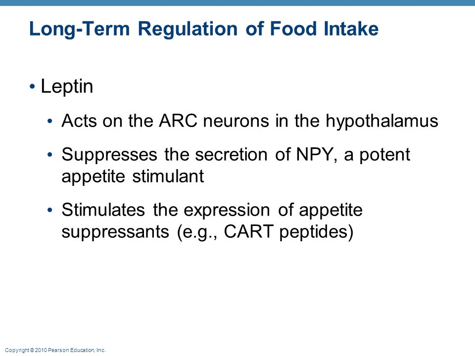 Long-Term Regulation of Food Intake