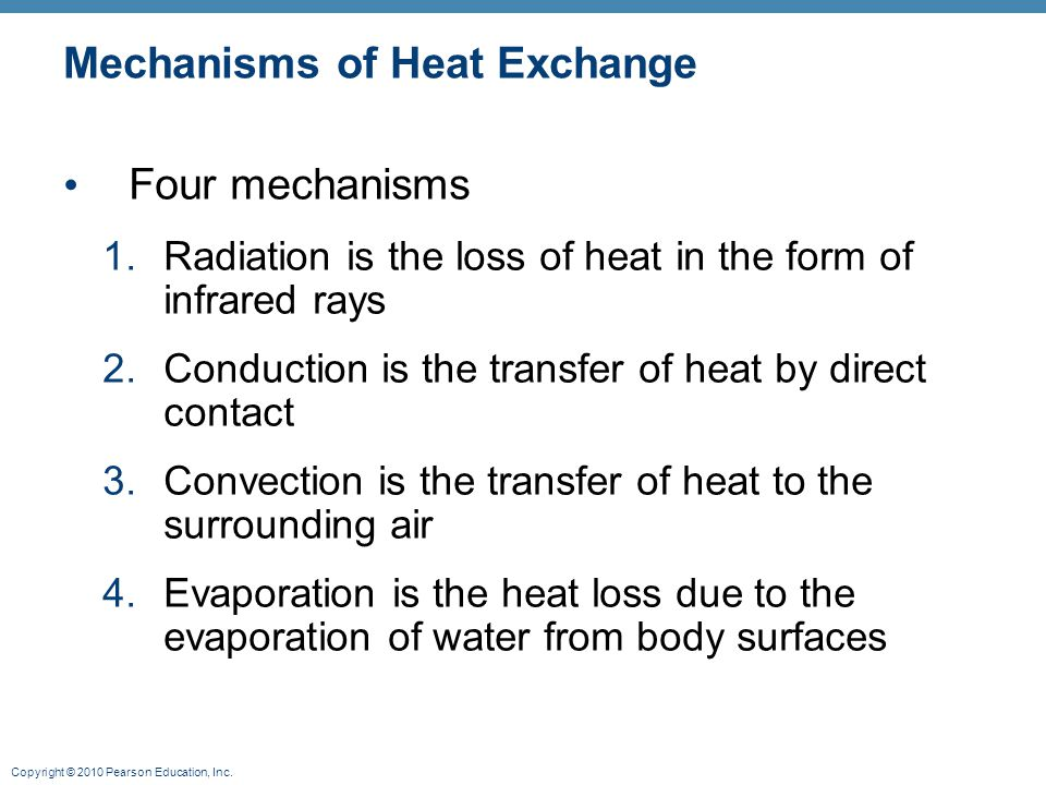 Mechanisms of Heat Exchange