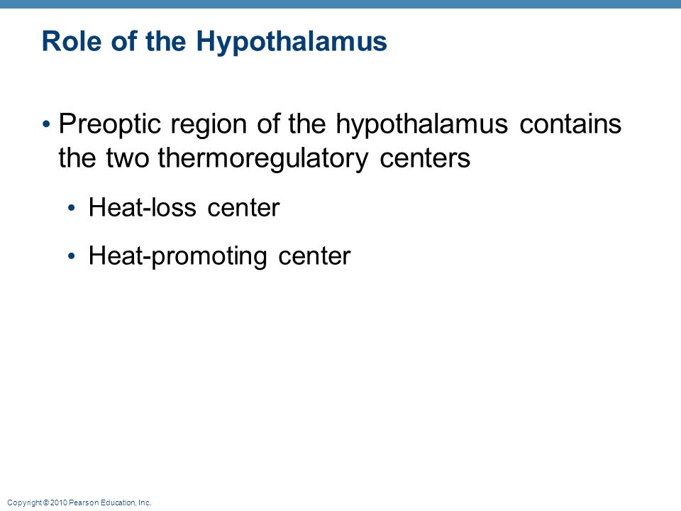 Role of the Hypothalamus
