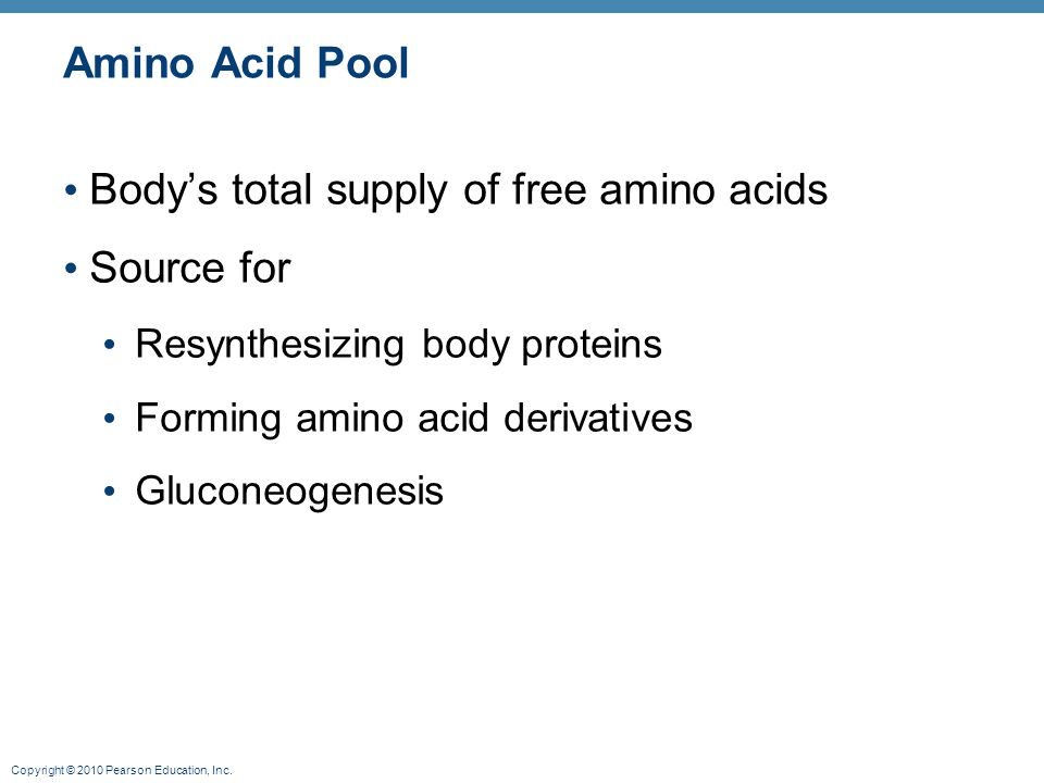 Body's total supply of free amino acids Source for