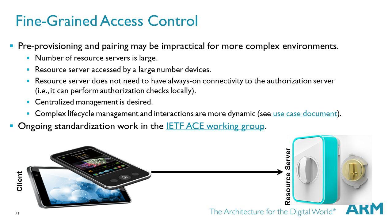 Fine-Grained Access Control