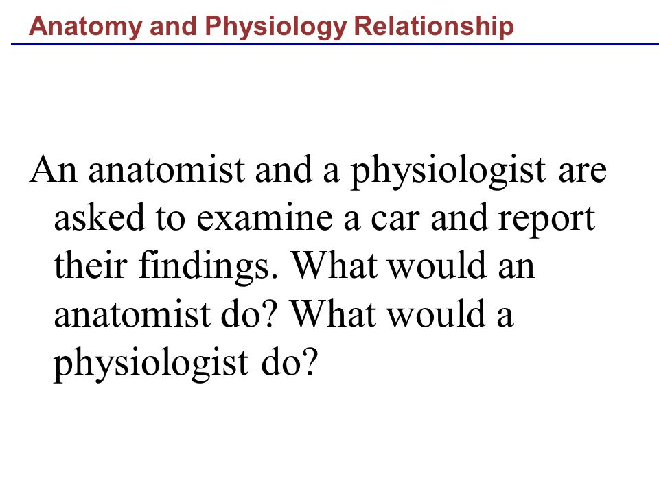 Anatomy and Physiology Relationship