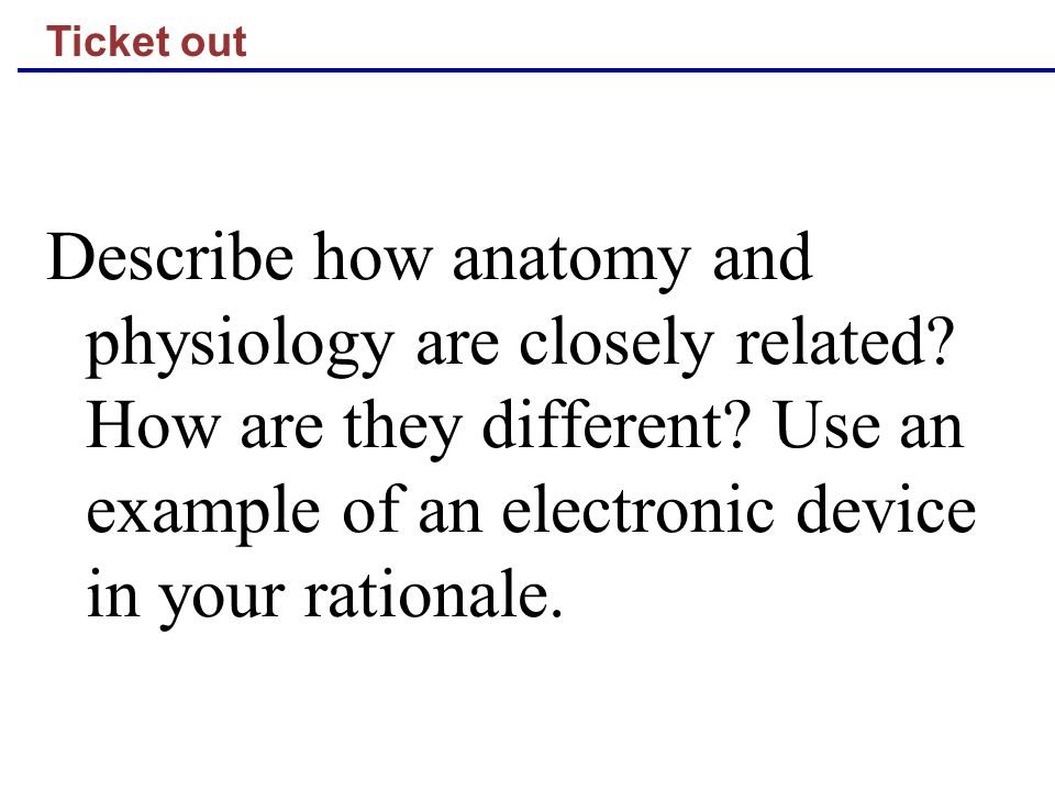 Ticket out Describe how anatomy and physiology are closely related.