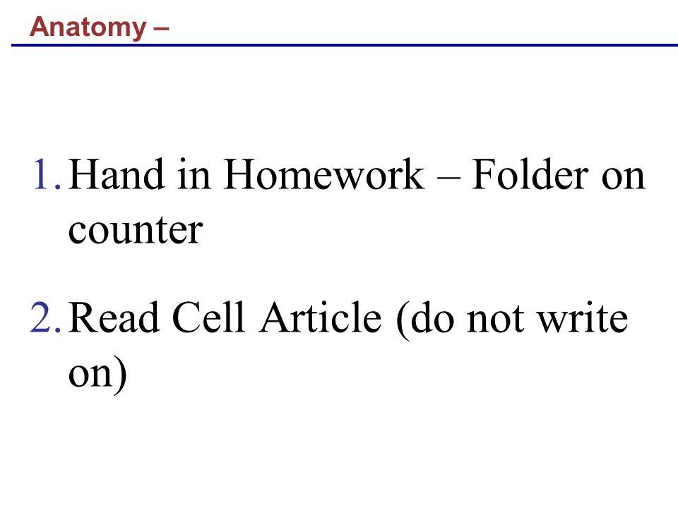 Hand in Homework – Folder on counter