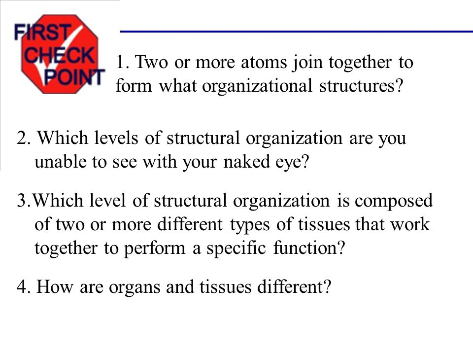 4. How are organs and tissues different