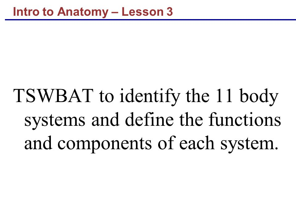 Intro to Anatomy – Lesson 3