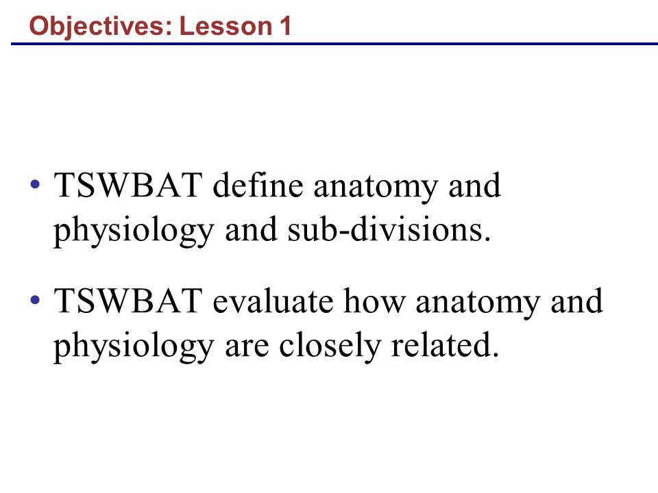 TSWBAT define anatomy and physiology and sub-divisions.
