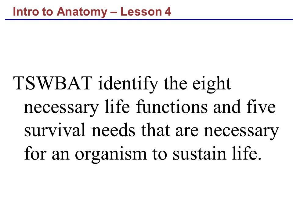 Intro to Anatomy – Lesson 4